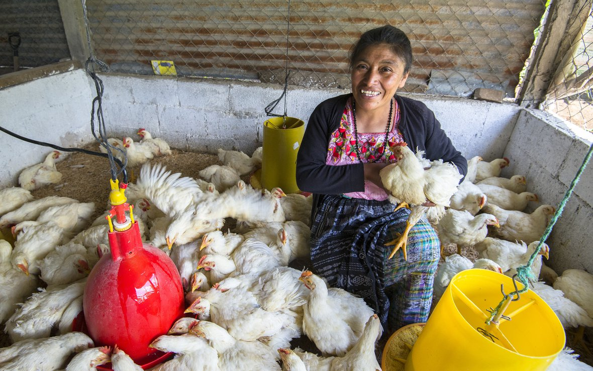Carmen_with_chickensOUS_50366_WISE_OXFAM-0211-ret.jpg