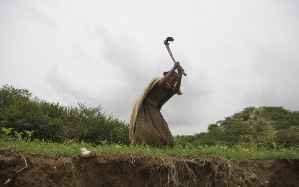 EthioBlogPicDSC-5191.jpg