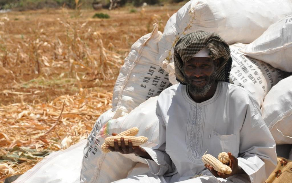 Hussein Gugar with his pile of corn
