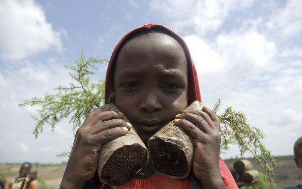 OUS_35274_250810Ethiopia2010ELJanssonDSC_4246-lpr.jpg