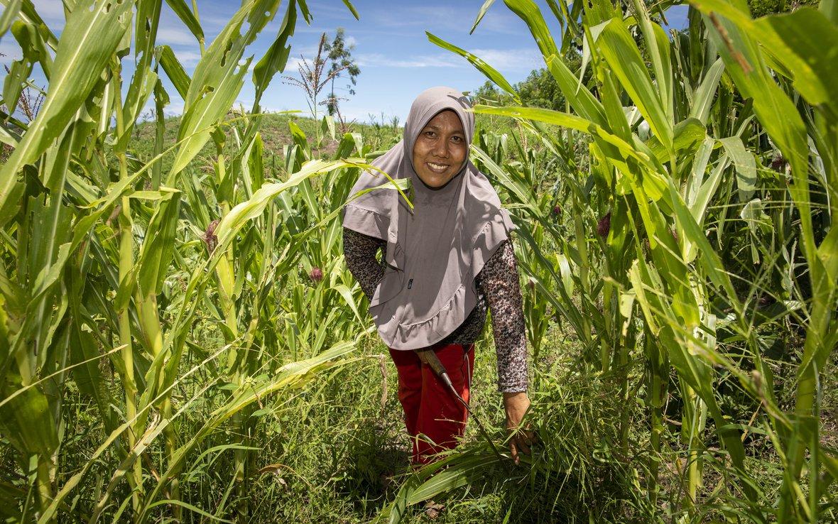 PALMOIL INDONESIA 059 (1).jpg