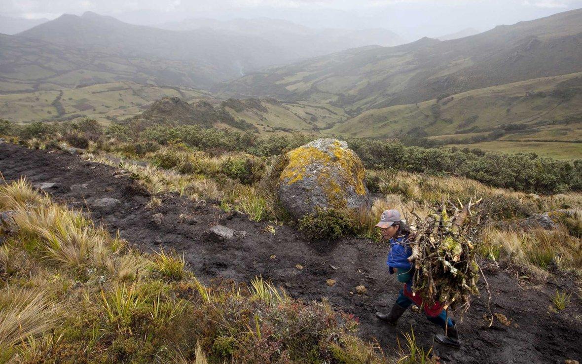 Peru_farmer_mtns_30177_.jpg