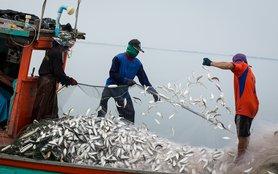 Thai fishing boat