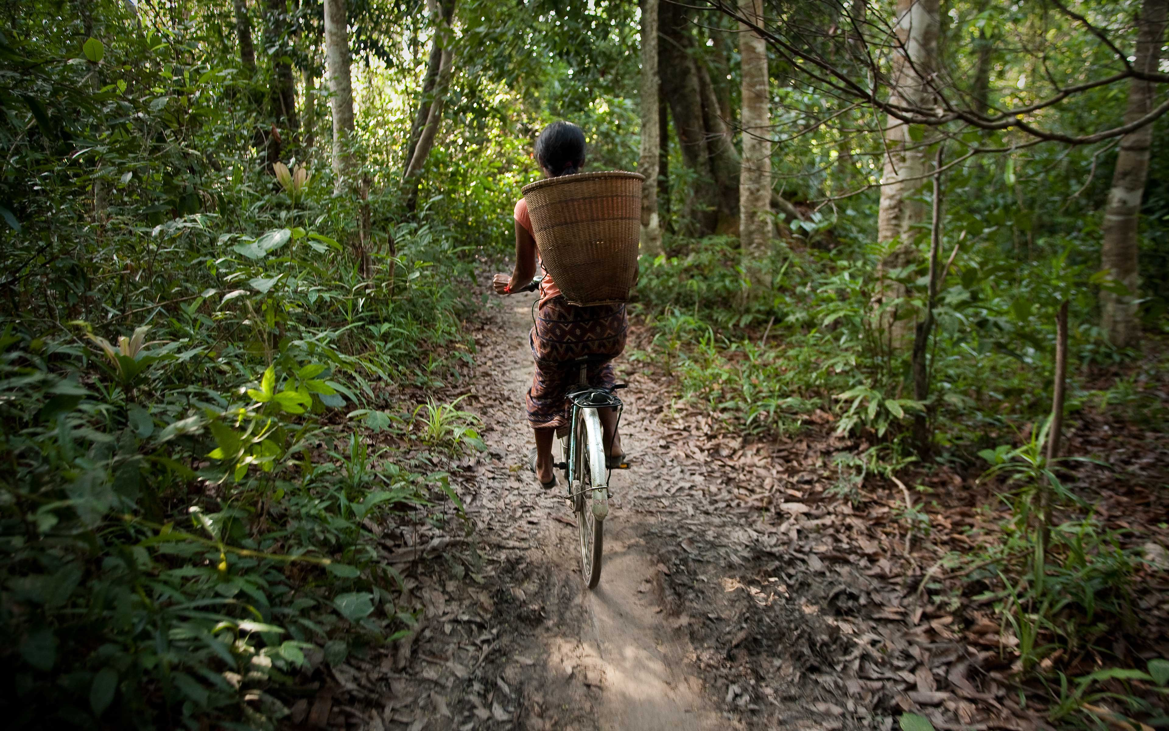 An ethnic Kaveat woman rides her bicycle through the Virachei National Forest near Cambodia's border with Laos. Even protected areas can be vulnerable to land grabs by powerful economic and political forces in Cambodia.