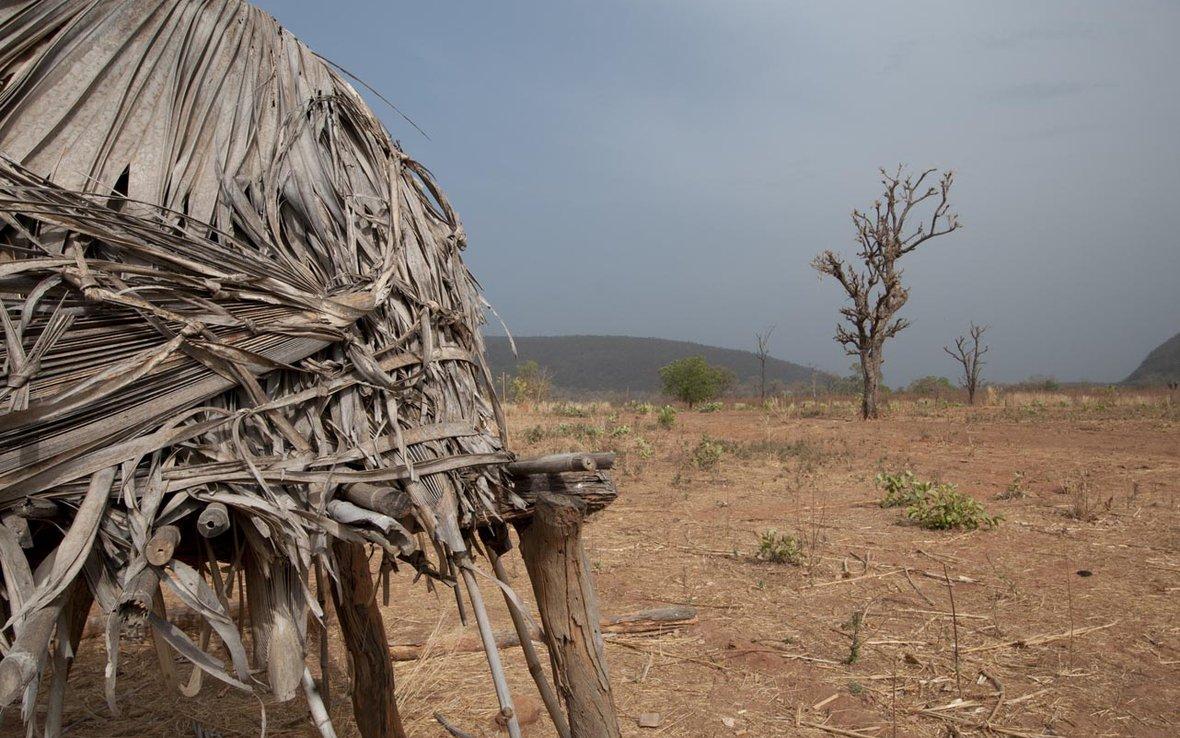 dry-season-field-in-senegal