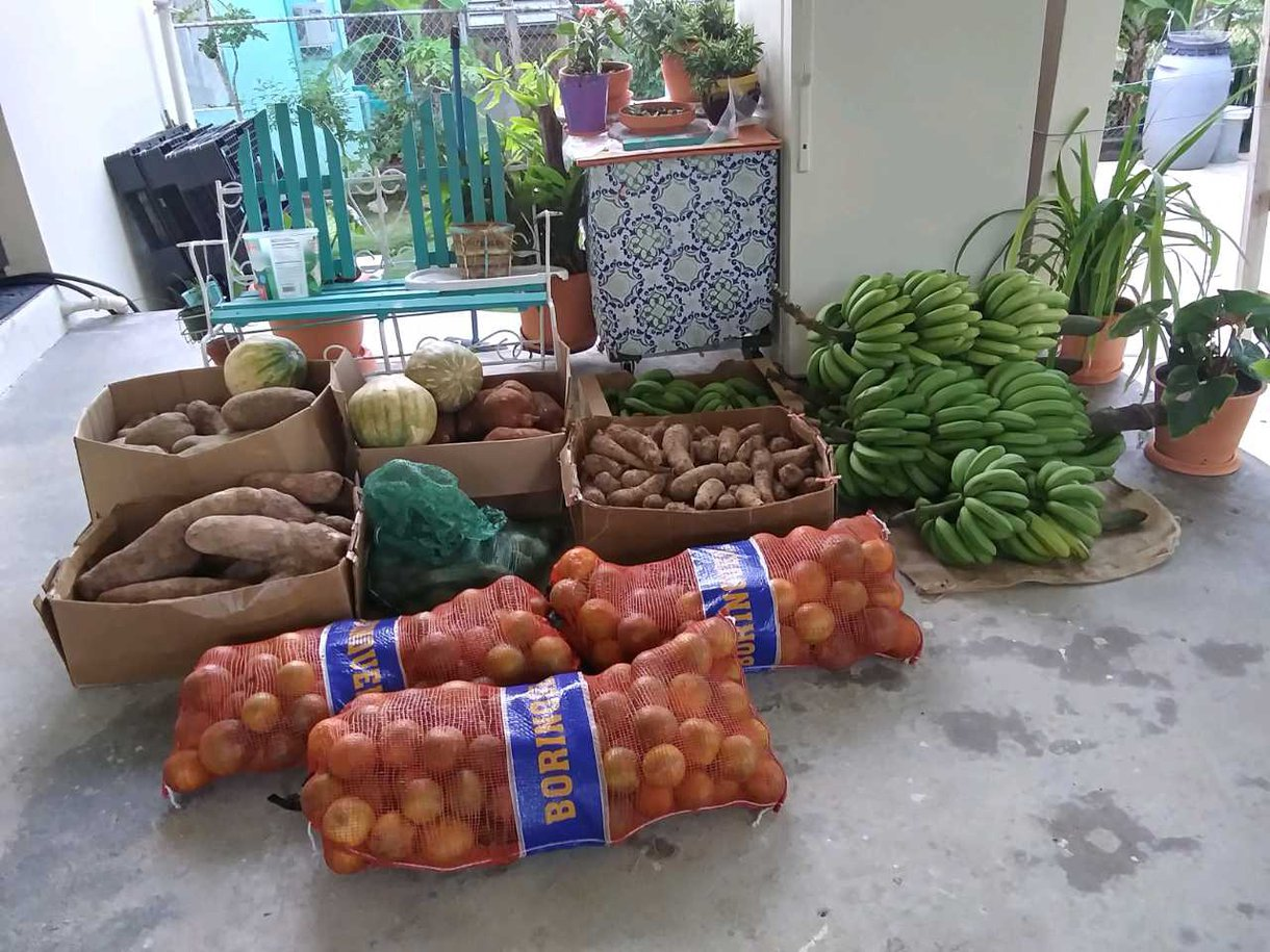 Food purchased with a grant from Oxfam by VAMOS PR and distributed to people affected by earthquakes earlier in 2020, and later by the COVID-19 pandemic..