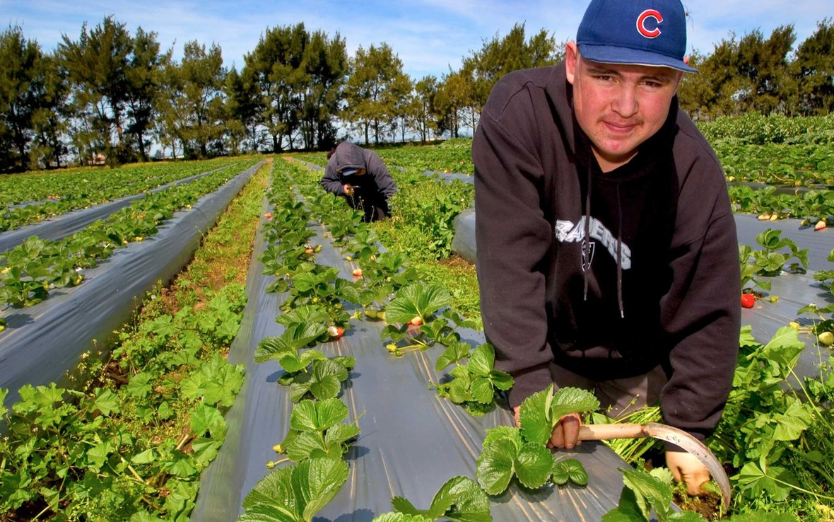 farm-worker-california-ous-38582_1220x763.jpg
