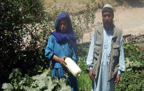 jignan-afghanistan-vegetabl.jpg