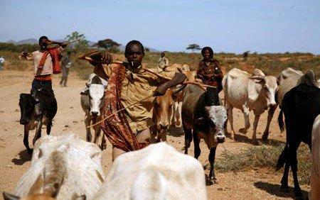 oromia-borena-drought.jpg