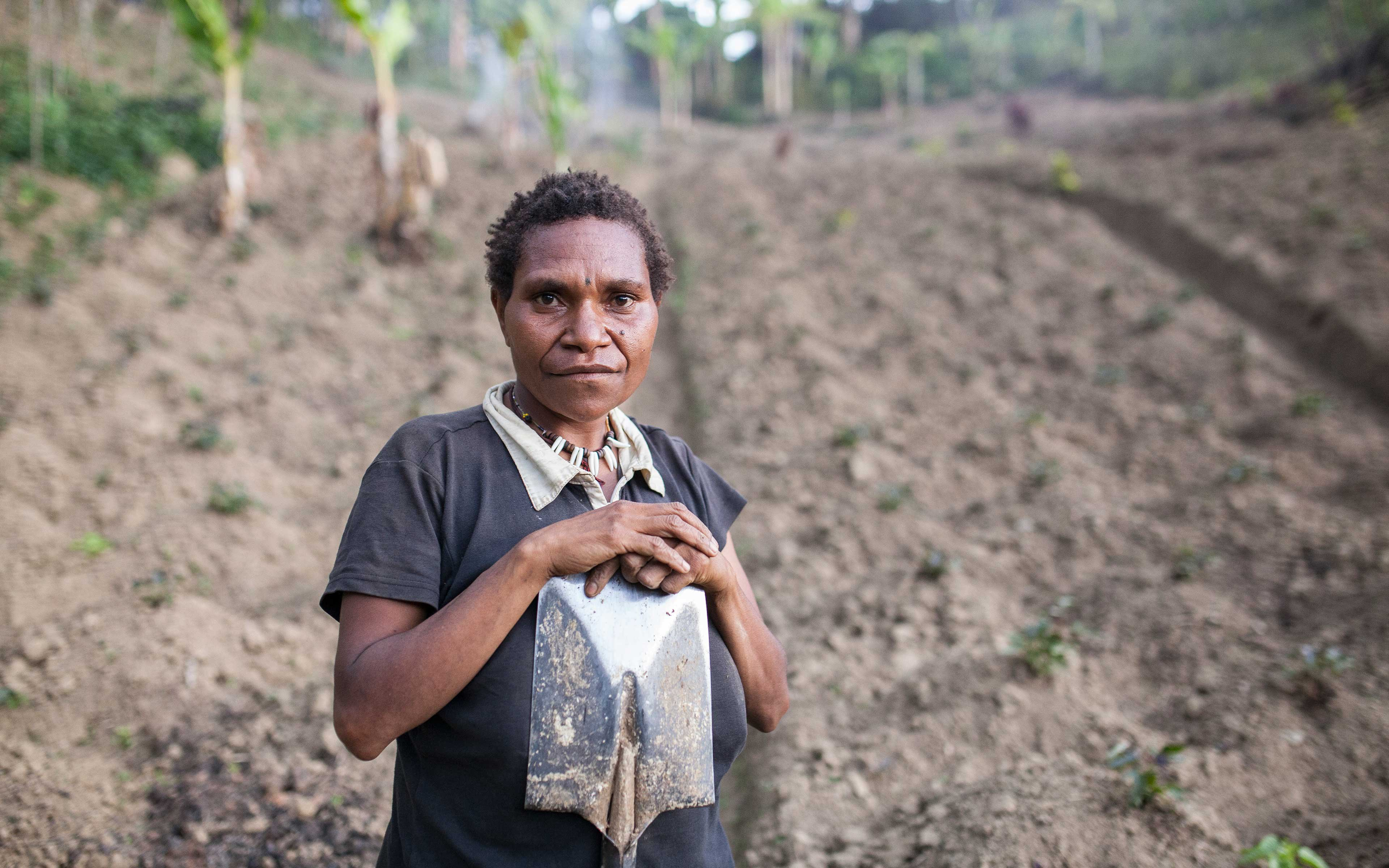 Lack of rain stunted the growth of the sweet potatoes Margaret Thomas planted. Normally, each plant would produce four or five potatoes. This season she expected just one or two. The crop is a vital source of income for Thomas and her family.