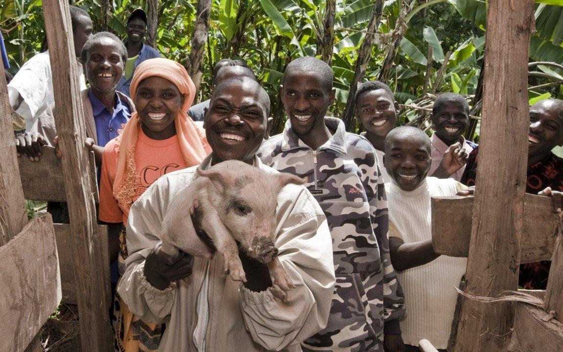 pigs-rwanda-oxfam (FILEminimizer).jpg