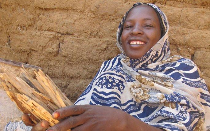sudan-hawa-adam-dawelbiat-holds-wood-SAG-stoves-2010.jpg