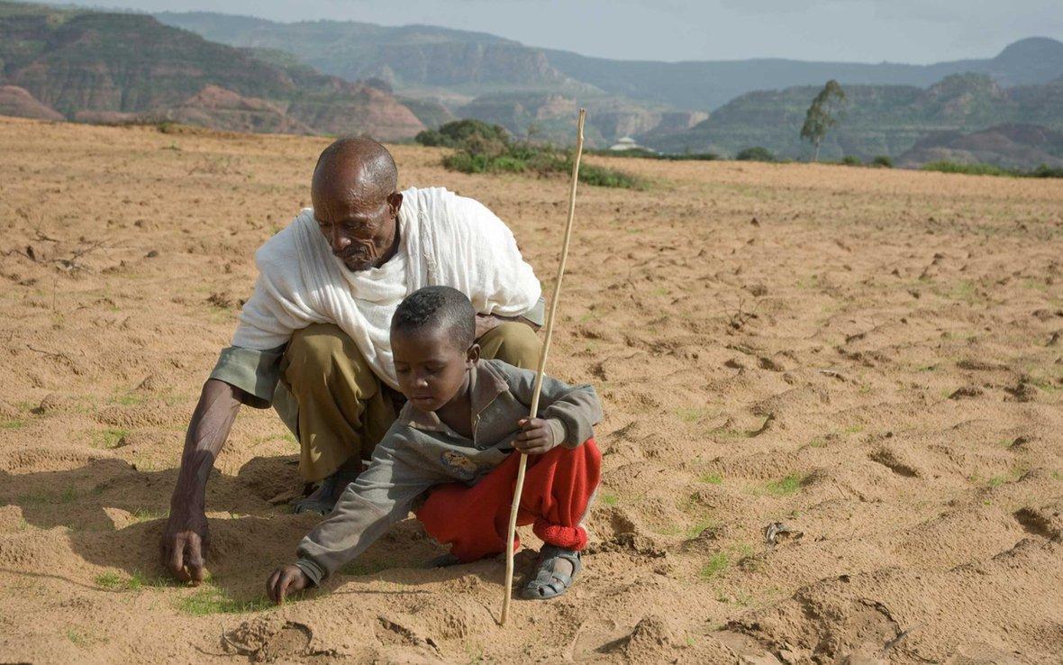 teff-field-farmers-ous-25285_1220x763.jpg