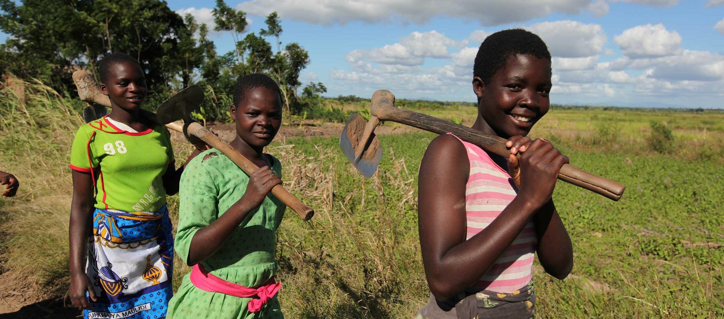 women-farmers-malawi-ogb-50147.jpg
