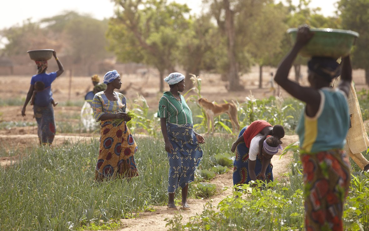 women-in-garden-burkina-faso-11-june-2012